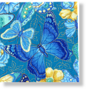 Butterfly_Turquoise